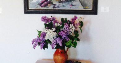 Кветкі ў галерэі Кастуся Качана